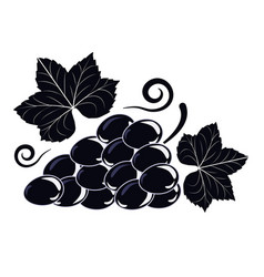 Symbol of a vine with black grapes and leaves vector