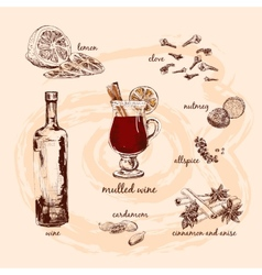 Mulled wine and its components vector image vector image