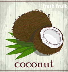 Hand drawing of coconut Fresh fruit sketch vector image vector image