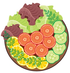 Plate with vegetables vector image vector image