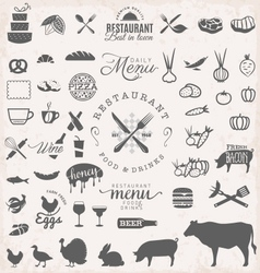 Restaurant Menu and Food Design Elements vector image vector image