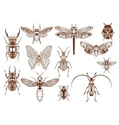 Brown tribal insects for tattoo or mascot design vector