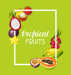 Frame with exotic tropical fruits vector