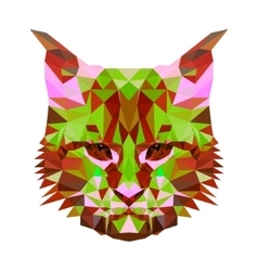 low poly abstract portrait of a motley cat vector image