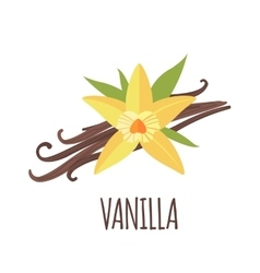 Vanilla icon in flat style on white background vector image