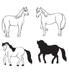 horse on white background vector image vector image
