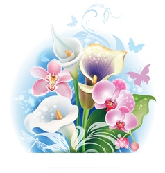 Bouquet of Orchid and Calla flowers vector image vector image