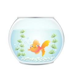 Cute cartoon goldfish in a fishbowl vector