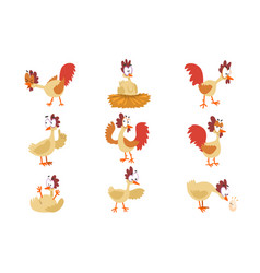 funny hen set comic cartoon bird characters in vector image