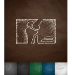 Knee-joint icon vector