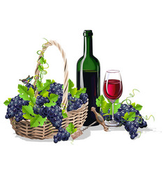 a bottle of wine and a basket of grapes vector image
