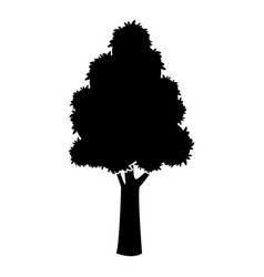 black tree silhouette trunk stem high plant vector image