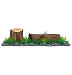 Isolated tree stump on white background vector