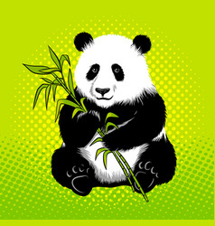 panda bear with bamboo pop art style vector image