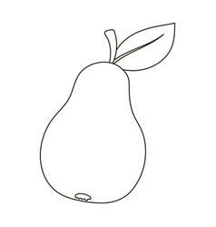 pear with a leaf fruit of labor of a garden vector image