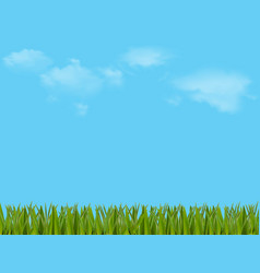 Spring or summer colorful with beautiful meadow vector