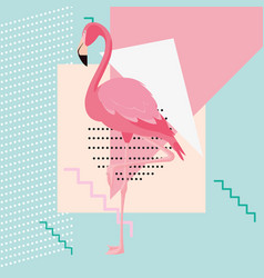 tropical flamingo design vector image