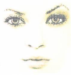 face mosaic vector image vector image