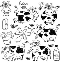 Set Of Isolated Funny Cow Icons vector image vector image