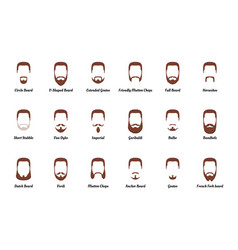 Man beards and mustaches vector