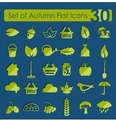 Set of autumn icons vector image