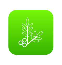 spa eco leafs icon green vector image