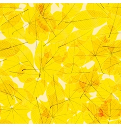 Transparent Autumn Leaves plus EPS10 vector image