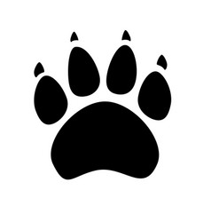 black silhouette of animal footprints on white vector image