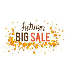 big fall sale vector image vector image