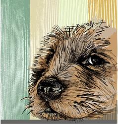 Sketch of a dog vector image vector image