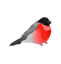 Flat icon of bullfinch small winter vector