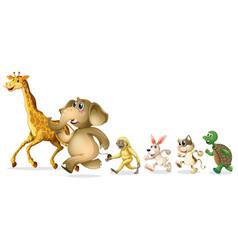 group wild animal on white background vector image