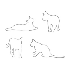 paths cats set on white background vector image