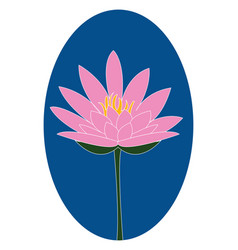 pink lotus on white background vector image
