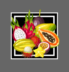 Print with exotic tropical fruits vector