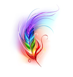 Rainbow Feather on White Background vector image