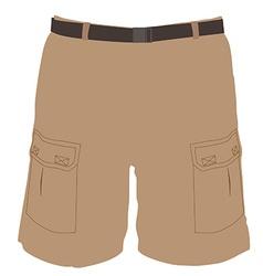 Shorts vector image