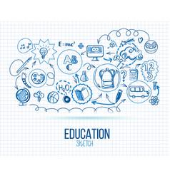 school education infographic vector image