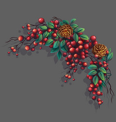 Bunch of mountain ash with leaves branches vector