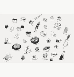 Collection different japanese food hand vector