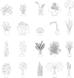 Greenhouse housing different types of plants vector