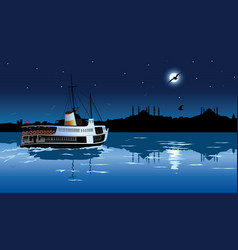 silhouette istanbul in moonlight vector image