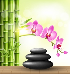 Stack of spa stones with orchid pink flowers and vector image