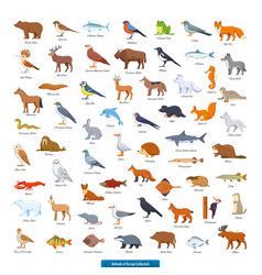 animals europe collection vector image