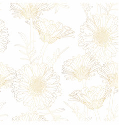beautiful backdrop with blooming gerbera chamomile vector image