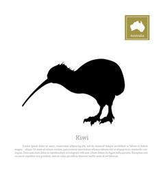 black silhouette kiwi bird animals australia vector image