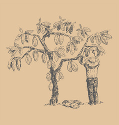 Cocoa tree with man character farmer hand vector