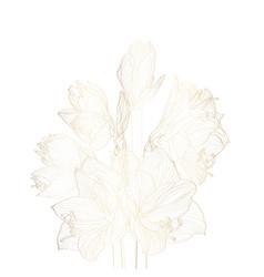 Decorative golden amaryllis line flowers vector