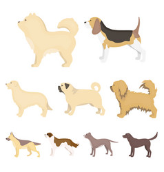 Dog breeds set icons in cartoon style big vector