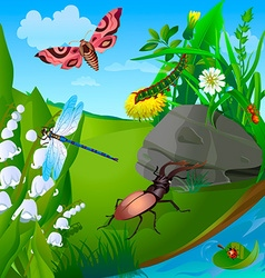 Summer insect 2 vector